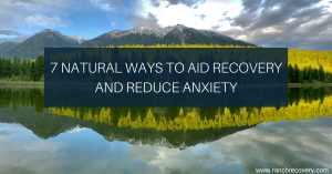 Natural Anxiety Aid